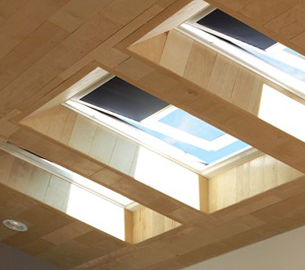 Skylight roofing Collingwood